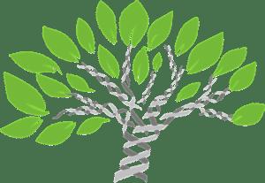 gene-tree-1490270_640